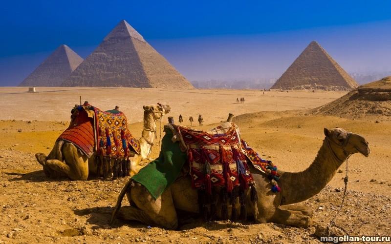 Первая поездка в Египет - советы туристам